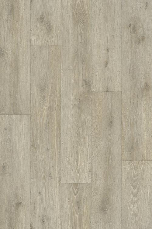 Forest Oak 59586