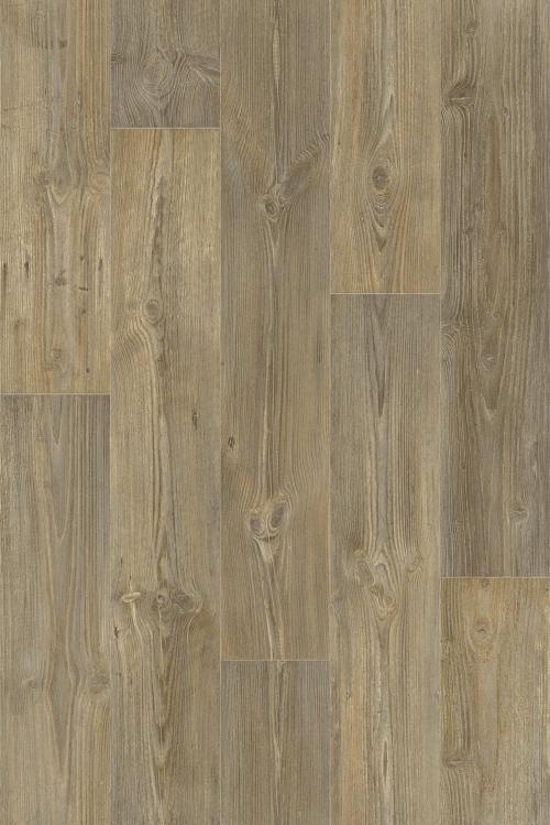 Barn Pine 59584