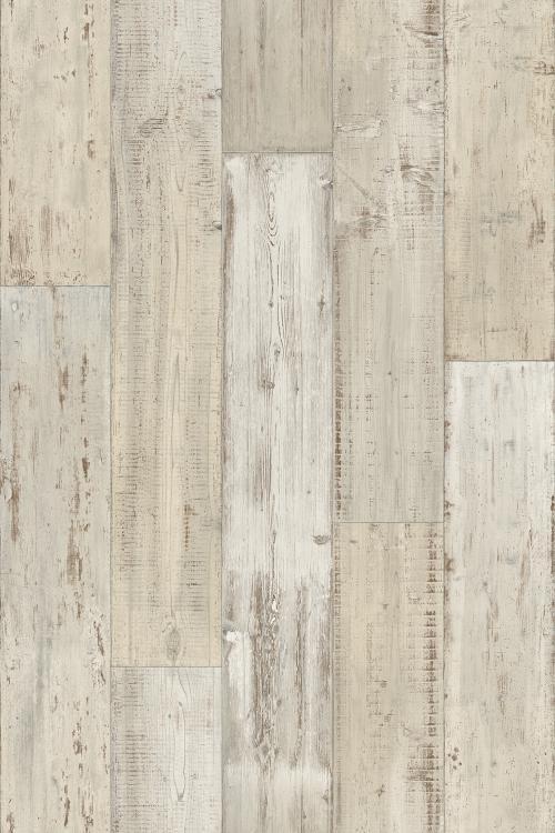 Driftwood 59595